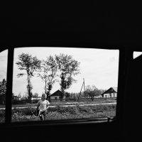 В окне :: Алексей Галушко