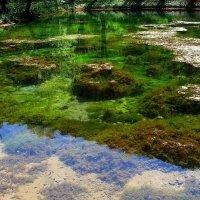 Зеленое озеро :: Ростислав