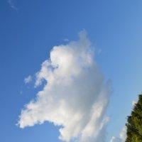 Облако в штанах... :: Владимир Павлов