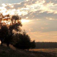 закат :: Алексей Гладышев