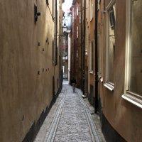Прогулка по старому Стокгольму :: Олег Неугодников
