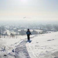 Мороз и солнце :: Роман Пацкевич
