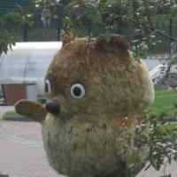 Хорошо живёт на свете Винни-Пух! :: Дмитрий Никитин