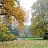 в осеннем парке... #13 :: Андрей Вестмит