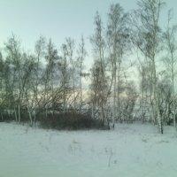 Встреча утра на трассе)) :: Алексей Кузнецов