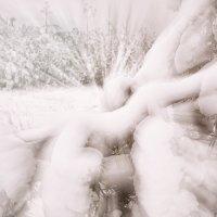 Snowburst. :: Андрий Майковский