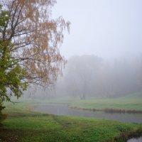в осеннем парке... #14 :: Андрей Вестмит