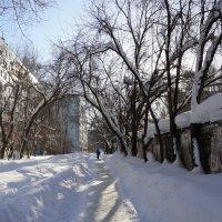 снежный город :: Ирина ***