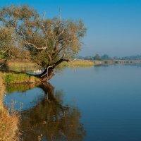 Озёра здесь тихие. :: Владимир Лобанов
