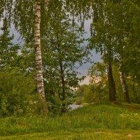 Весенние картинки :: Ольга Винницкая (Olenka)