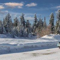 В Саянах,Сибирь :: Алексей Мезенцев