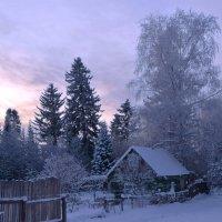 Морозный вечер :: Вера Андреева