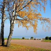 в осеннем парке... #15 :: Андрей Вестмит