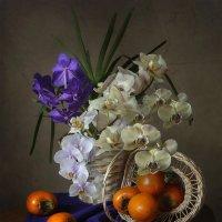 Натюрморт с орхидеями и хурмой :: Ирина Приходько