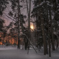 Лунный свет :: Александр Попович