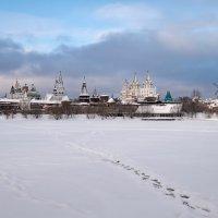 Измайлово зимой :: Олег Пученков