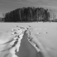 Зима, -26 :: Валерий Михмель