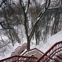 Лестница-кудесница ... :: Лариса Корж-ая