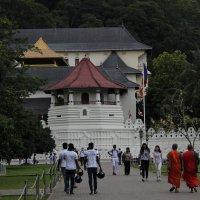 В храме Зуба Будды :: Любовь