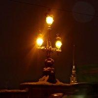 ночь на Троицком мосту :: Елена