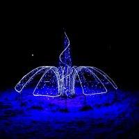 Ночные огоньки :: Дарья Беляк