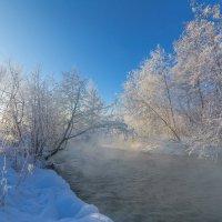 В утренних лучах :: vladimir Bormotov