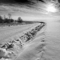 Зимняя дорога. :: Геннадий Порохов