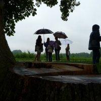 шел дождь ... :: Heinz Thorns