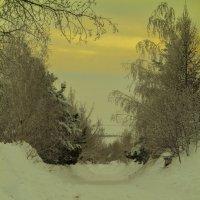 зима :: Анастасия Мойсук