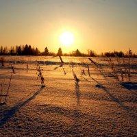 Морозный закат :: ИгорьОк Бородин