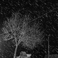 вечерний снегопад :: Виталий Исаев