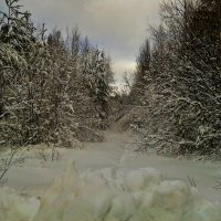 засыпало снегом :: Владимир