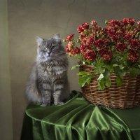 Масяня с букетом пестрых роз :: Ирина Приходько