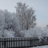 Красоты зимушки-зимы! :: Vladimir Perminoff