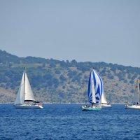 Морская прогулка... :: Валерий Подорожный
