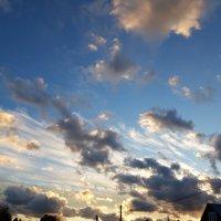 Небо-небо... :: Вера (makivera)