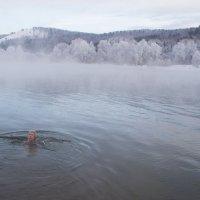 крещенские купания :: Ларико Ильющенко