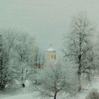 храм на фоне зимы :: Галина Левченко