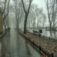 Одесская зима :: Alis AN