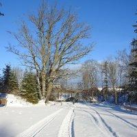 зимняя дорога :: ИННА