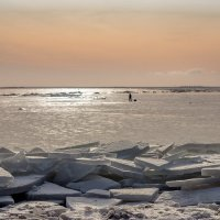 На Финском заливе 2 :: Виталий