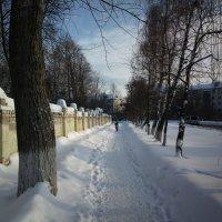 Солнечный день :: Николай Филоненко