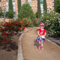 Сказочный сад. :: Марина Ножко