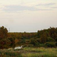 Ранняя осень :: Анна Суханова