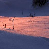дорога закатного солнца :: Георгий А