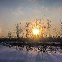 Солнце :: Ruslan