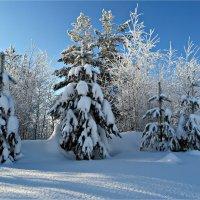Зимний день :: Leonid Rutov