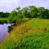Пейзаж :: Ольга (crim41evp)