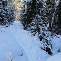 снежный спуск :: Владимир