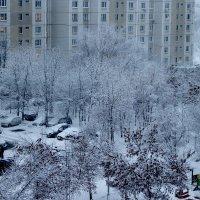 Предвесенний снег, Москва :: Людмила Монахова